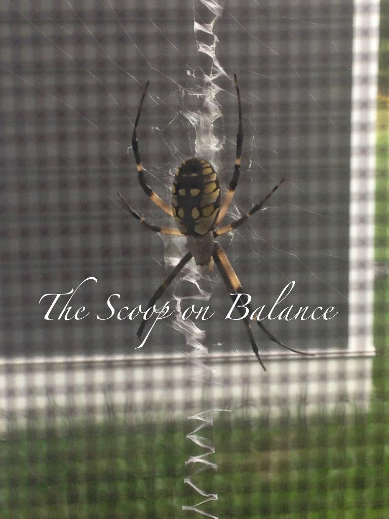 She Spider