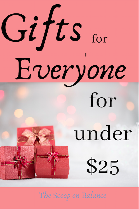Gifts for Everyone for Under $25